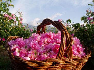 Мраморные розы Верхняя Тура Эконом памятник Волна в камне Закаменск